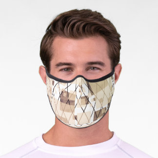 Abstract Lines and Shapes Premium Face Mask