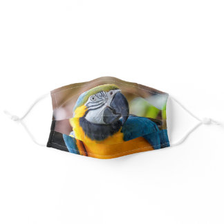 Beautiful Blue and Gold Macaw Parrot Bird Adult Cloth Face Mask