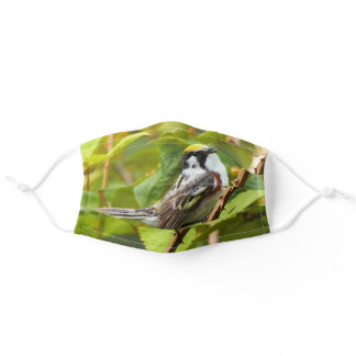 Beautiful Chestnut-Sided Warbler on a Branch Adult Cloth Face Mask