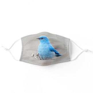 Beautiful Mountain Bluebird on the Tansy Adult Cloth Face Mask