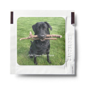 Black Lab with two sticks Dog Photo Hand Sanitizer Packet