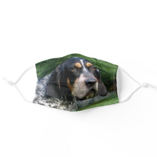 bluetick coonhound adult cloth face mask