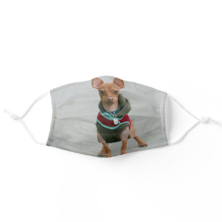 Chihuahua dog face mask cover