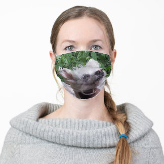 Chinese_Crested Adult Cloth Face Mask