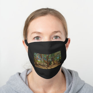 Colorful Trees in Tucson Botanical Gardens Black Cotton Face Mask