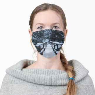 Crossing the river in winter adult cloth face mask