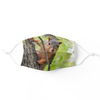 Curious Squirrel Face Mask