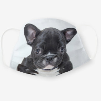 Cute Custom Dog Photo Cloth Face Mask