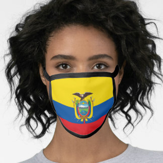 Ecuadorian flag face mask