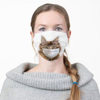 Face mask on Maine Coon cat