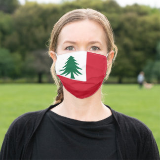 Flag of New England Adult Cloth Face Mask