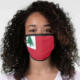 Flag of New England Face Mask