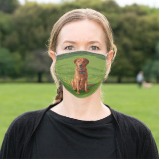 Fox Red Yellow Labrador Retriever Dog Adult Cloth Face Mask