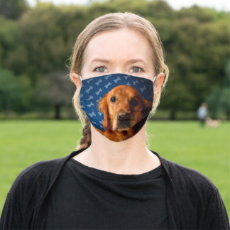 Golden Retriever blue bone background Cloth Face Mask