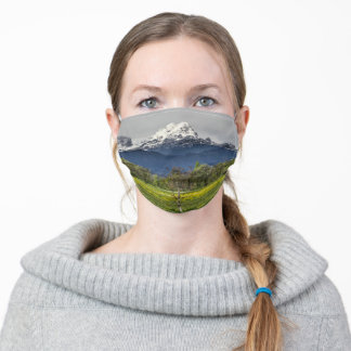 Green field with snowy alps adult cloth face mask