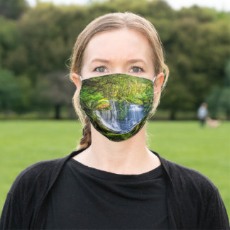 Horseshoe Falls face mask