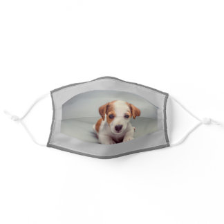 Jack Russell Terrier Puppy Laying Down Tan and Whi Adult Cloth Face Mask