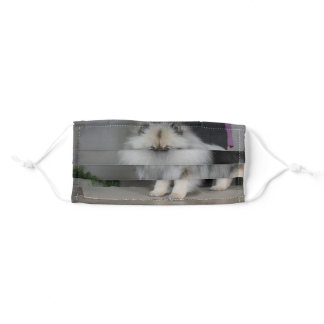 Keeshond Front Mask
