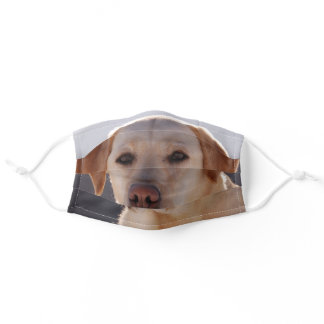 Labrador Retreiver Yellow Adult Cloth Face Mask