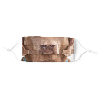 Old Weimaraner dog face Adult Cloth Face Mask