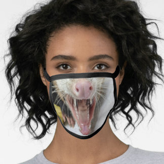 Opossum Facemask Face Mask