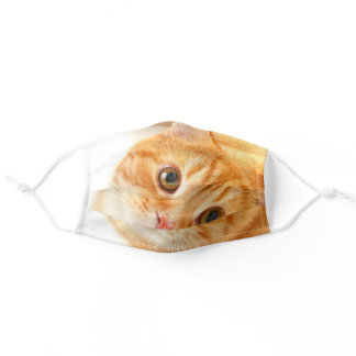 Orange  cat looking adult cloth face mask