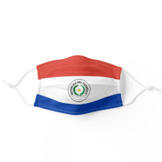 Paraguayan flag adult cloth face mask