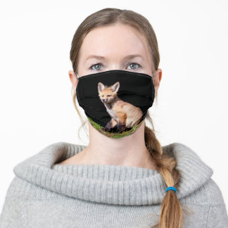 Red Fox Kit in The Hudson Valley Adult Cloth Face Mask