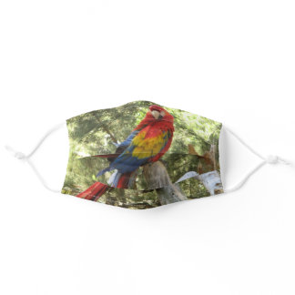 Red Parrot Macaw Bird Pretty Adult Cloth Face Mask