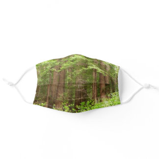 Redwood Trees at Muir Woods National Monument Adult Cloth Face Mask