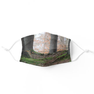 Scenic Autumn Forest Adult Cloth Face Mask