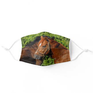 Two Beautiful Chestnut Horses in the Sun Adult Cloth Face Mask