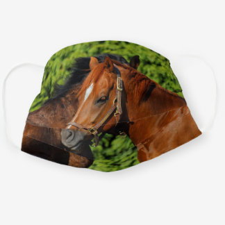 Two Beautiful Chestnut Horses in the Sun Cloth Face Mask