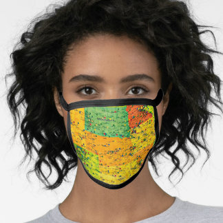 United States Map with Stick Pins Face Mask