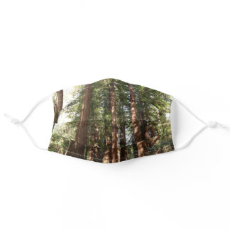 Up to Redwoods II at Muir Woods National Monument Adult Cloth Face Mask