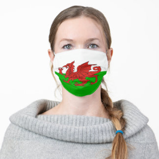 wales flag country symbol nation ethnic british un adult cloth face mask