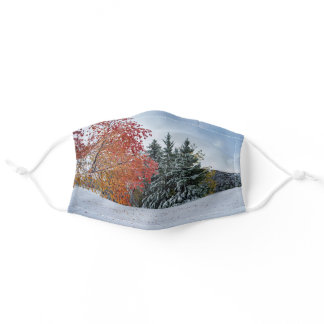 Winter in Autumn Face Mask